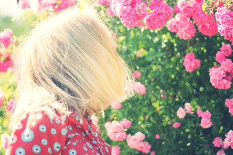 2015-07-Life-of-Pix-free-stock-photos-pink-flowers-woman-juliacaesar